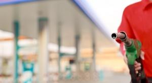 Liczba stacji paliw w Polsce najwyższa od 2012 roku