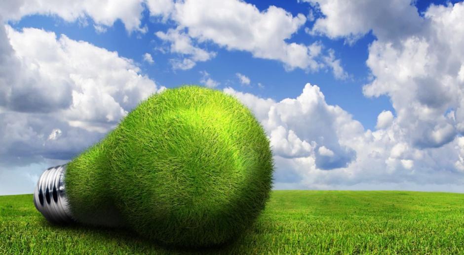 BGŻ BNP Paribas i EBOiR sfinansują energooszczędne technologie