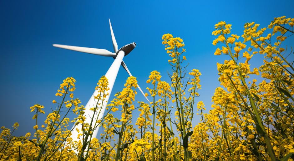 Rośnie ryzyko naruszania umów kredytowych przez energetykę wiatrową