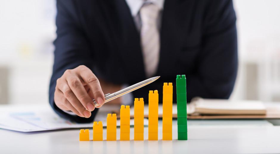 Prezes PAIiIZ: rok 2016 to wzrost obsłużonych inwestycji zagranicznych o 20 procent