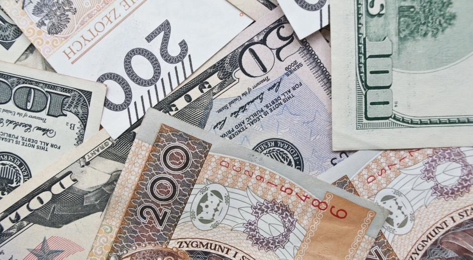 Wartość banknotów w Polsce w ciągu dekady potroiła się