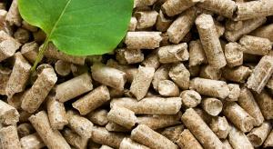 Słomiany zapał w rozwoju spalania pelletu?