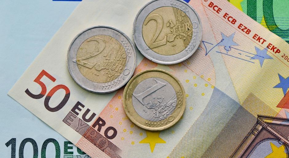 Ryszard Petru rozpoczął kampanię społeczną na rzecz przyjęcia w Polsce euro