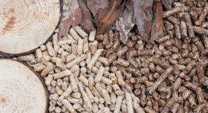 Aukcja OZE dla małych instalacji na biomasę nierozstrzygnięta