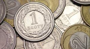 """PSL chce zasady """"złotówka za złotówkę"""" w programie """"500 plus"""""""