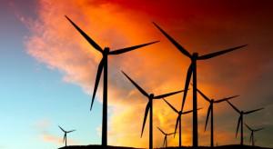 PSEW: elektrownie wiatrowe sposobem na powstrzymanie wzrostów cen prądu