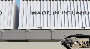 Aktywność międzynarodowa polskich firm pozostanie ograniczona