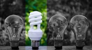 Chcą pomagać firmom w oszczędzaniu energii