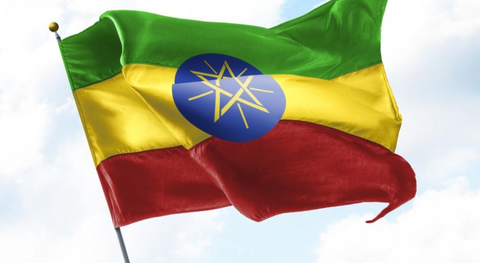 Etiopia: Zmasowany atak armii rządowej na stolicę prowincji Tigraj