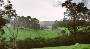 Duży wzrost cen gruntów rolnych