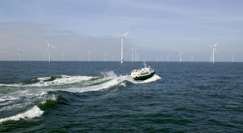 Mitsubishi kupuje farmy wiatrowe w Europie