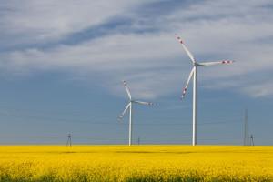 TFI PZU sfinansuje budowę dwóch farm wiatrowych