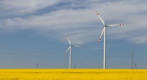 Nadpodaż zielonych certyfikatów budzi obawy inwestorów