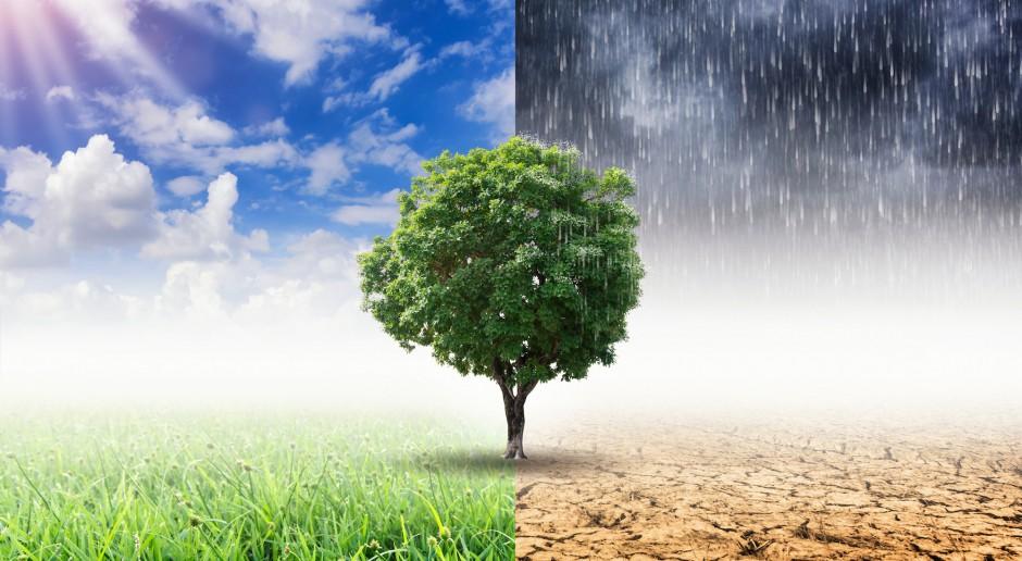 Niemcy. W Bonn rozpoczęła się konferencja NZ ws. zmian klimatu