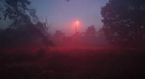 Kalisz i Ostrów Wielkopolski zainwestowały w inteligentne oświetlenie