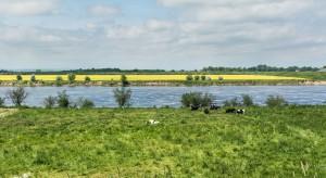 Brzegi rzek i jezior są ciągle niszczone
