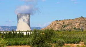 Jeden kraj rządzi atomem w Europie