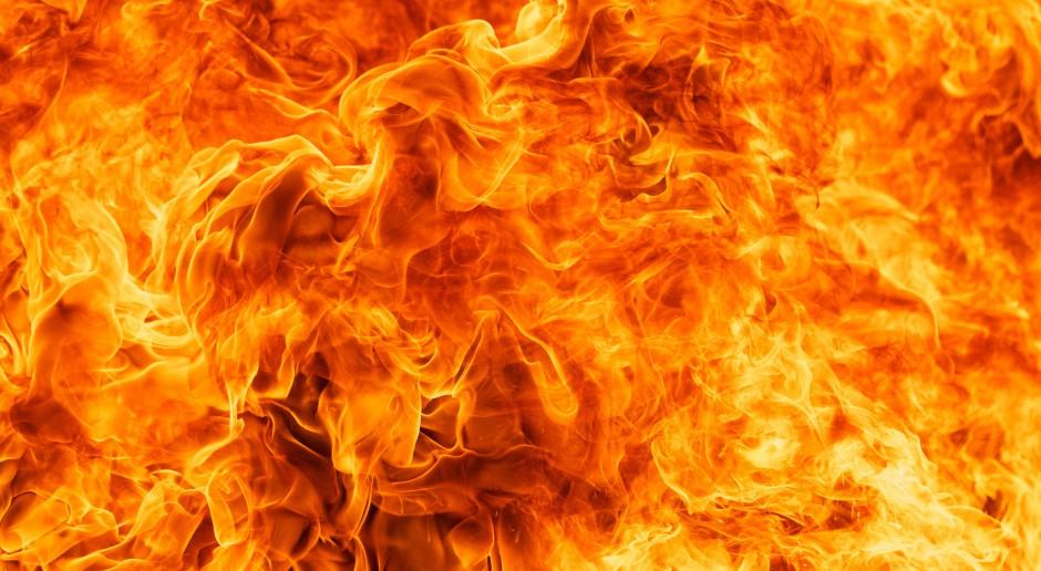 Strażacy gaszą pożar tartaku w Wąchocku