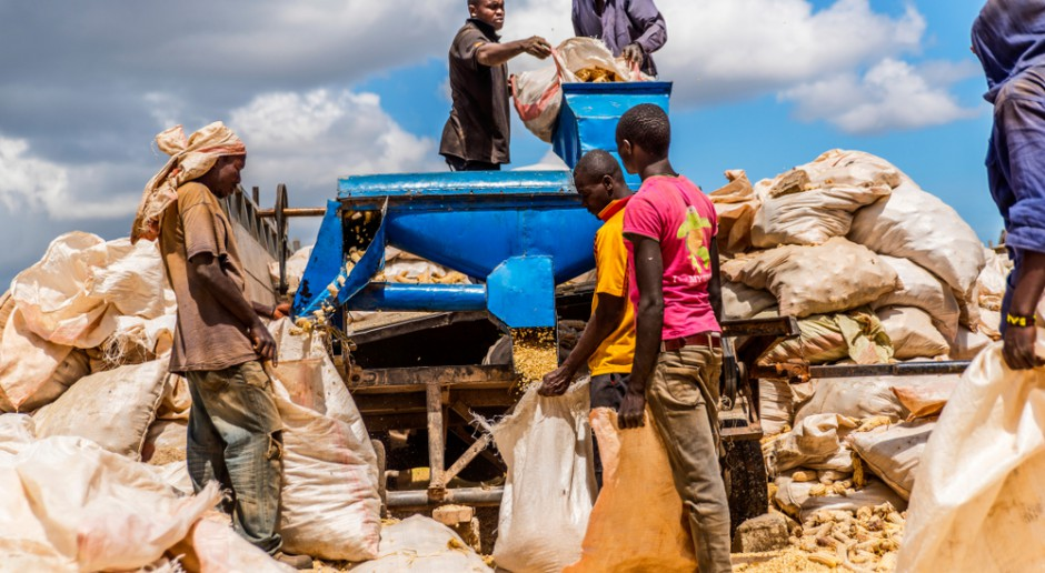 Rolnictwo, przemysł i rynek spożywczy w Kenii