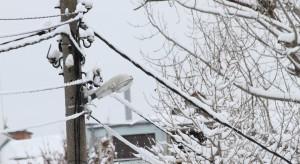 Problemy z dostawami prądu po intensywnych opadach śniegu