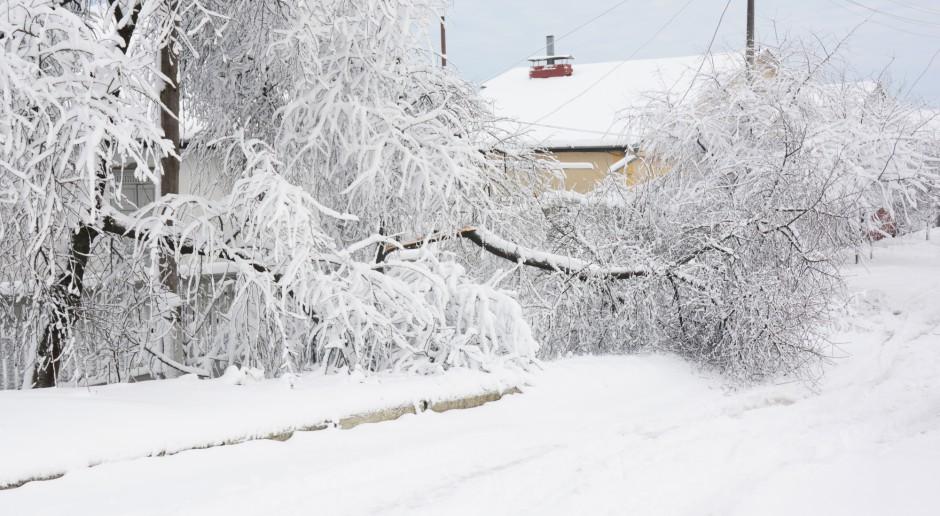 Hiszpania: Konwoje z żywnością i lekami wysłane na tereny odcięte przez śnieżycę