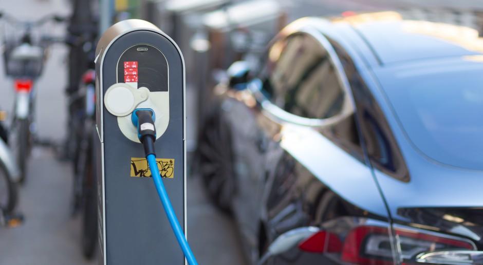 Małe i średnie firmy nie chcą kupować samochodów elektrycznych