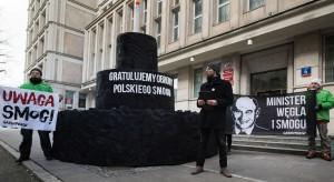Minister energii otrzymał wielki tort z węgla