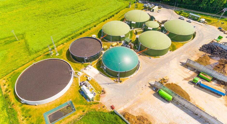 MDI Energia z umową na budowę elektrociepłowni na biogaz rolniczy