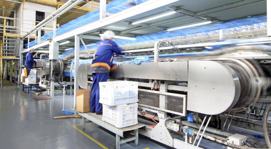 Produkcja przemysłowa. Marcowe spowolnienie