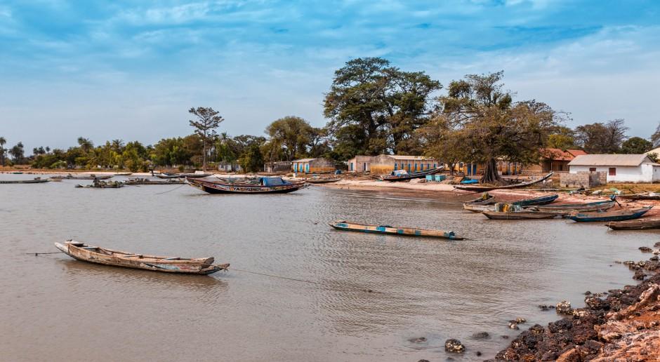Gambia: kraj krewetek i orzeszków ziemnych