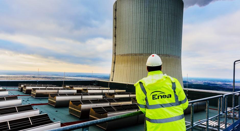Duży wzrost przychodów i zysku grupy Enea