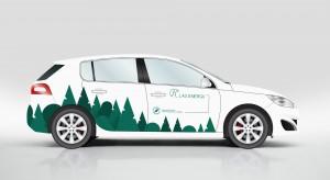 Rusza jeden z największych w Polsce przetargów na dostawę samochodów elektrycznych