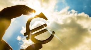 Polski biznes ponownie przekonał się do euro