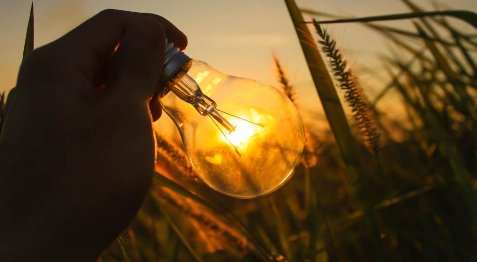 Ruszyły konsultacje rozporządzenia ws. rekompensat za ceny energii