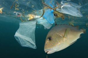 Tak koncerny walczą z plastikiem. Raport nie pozostawia złudzeń