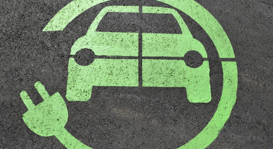 Styczniowa sprzedaż aut w Norwegii - 44 proc. to pojazdy elektryczne