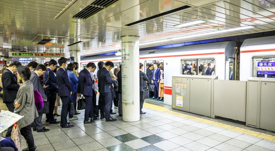 Japonia chce chronić swój rynek przed dominacją wielkich firm z USA