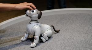 Sony wypuści robotycznego psa w USA