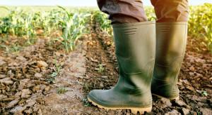Prezydent podpisał ustawę oddłużającą gospodarstwa rolne