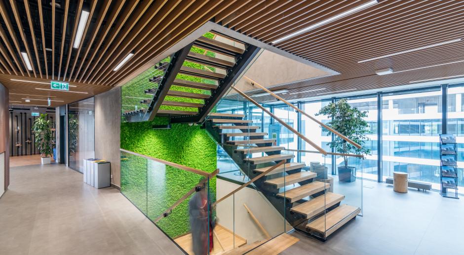 Energetyczna zmiana zrewolucjonizuje nowe i zmodernizuje stare budynki