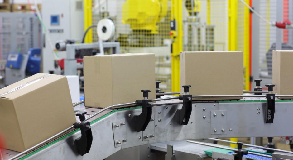 Jadwiga Emilewicz: Rząd nie planuje zamykania przedsiębiorstw produkcyjnych