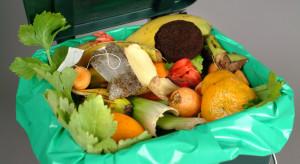 Badanie: w czasie lockdownu Polacy marnowali mniej żywności