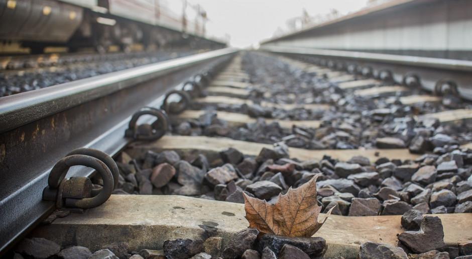 Ogłoszono przetarg na projekt rozbudowy torów na stacji w Terespolu