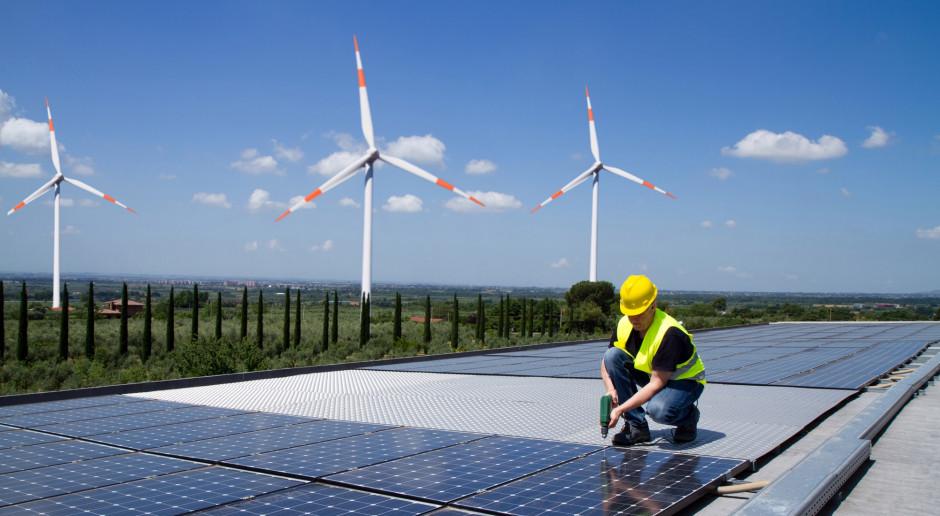 Wytwórcy pytają, kiedy kolejne aukcje dla źródeł odnawialnych