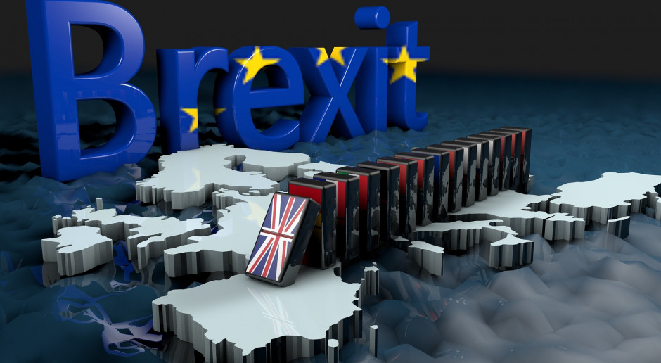 Jest projekt ustawy regulującej status imigracyjny brytyjskich obywateli