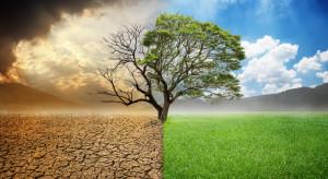 Klimat to inwestycja na której możemy zarobić