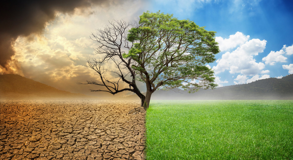 Strajki klimatyczne na całym świecie. Protestowano w Europie i nie tylko