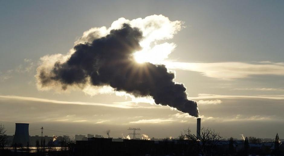 Europosłowie PiS i PO są zgodni w sprawie celu klimatycznego Unii