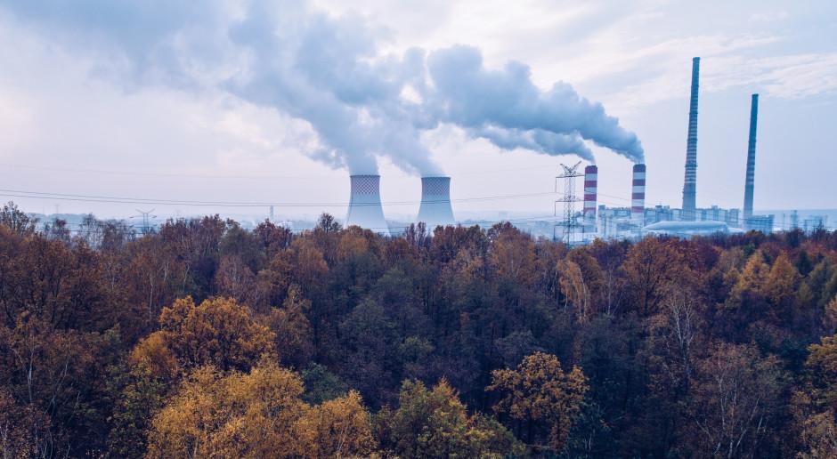 Raport KOBiZE z rynku CO2 - listopad 2020