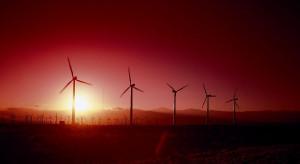 Egipt stawia na energię z wiatru